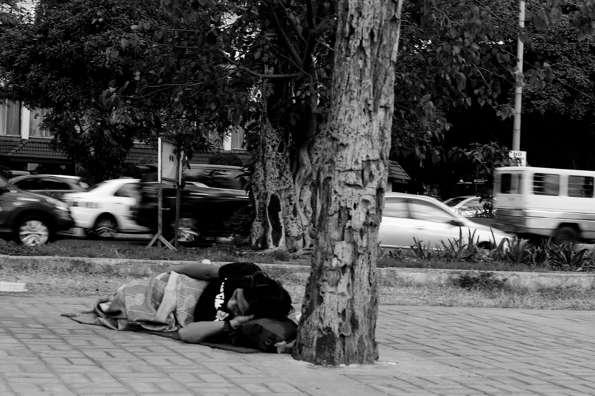 Homeless veteran sleeping outside next to a tree on the street